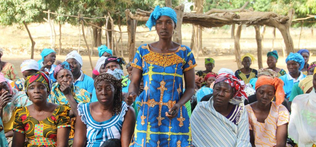 OLVEA - producteur beurre de karité burkina faso afrique biologique durable