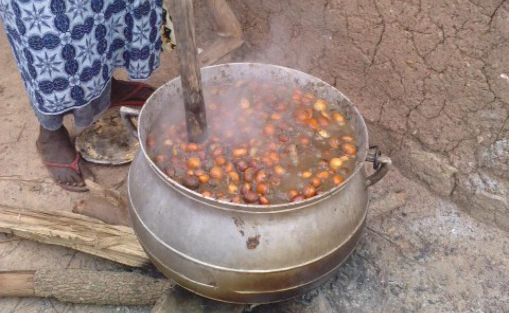 OLVEA - producteur beurre karité équitable biologique burkina faso afrique