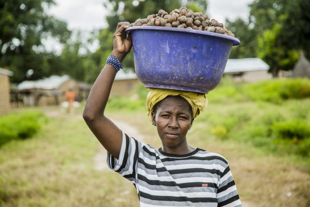 OLVEA - Bilan de campagne Karité - Burkina Faso