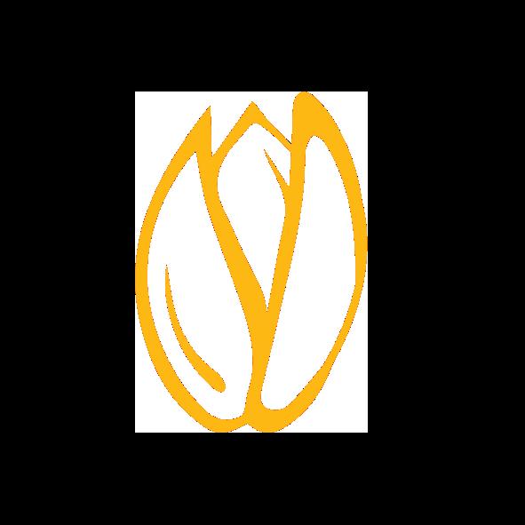 OLVEA - Production d'huile d'argan - Dépulpage