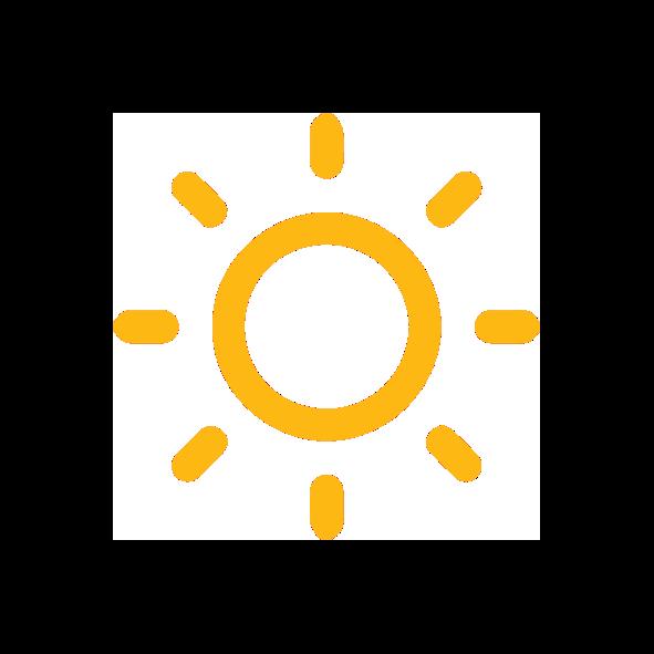 OLVEA - Production d'huile d'argan - Séchage au soleil