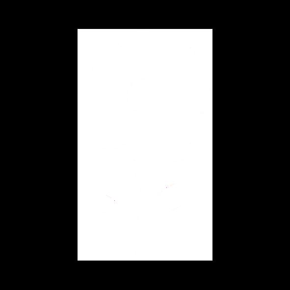 OLVEA - Production d'huile d'argan au Maroc - Fleur d'argan